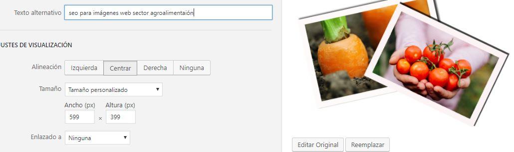 Captura seo imágenes wen sector agroalimentación