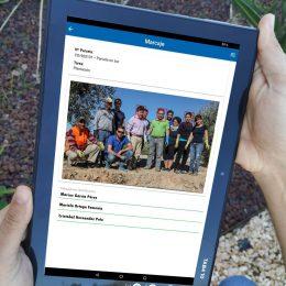 """Gregal lanza una nueva app """"Marcajes de campo"""" que facilita la gestión diaria de los trabajadores y recolectores en la explotación agrícola."""