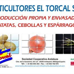 Horticultores El Torcal confía en VisionCredit Secciones de Crédito