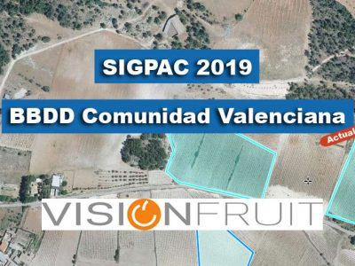 SIGPAC 2019 ACTUALIZADA PARA VISIONFRUIT