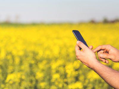 ¿Cómo ayudan las nuevas tecnologías y la inteligencia artificial (IA) a nuestro negocio agrario?
