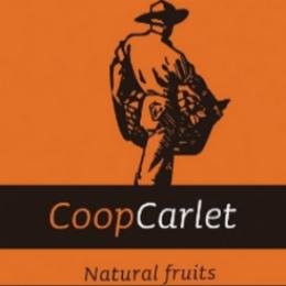 La sección de crédito de Cooperativa Agrícola Sant Bernat ofrece el mejor servicio con VisionCredit®