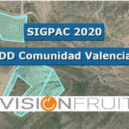 SIGPAC 2020 ACTUALIZADA PARA VISIONFRUIT