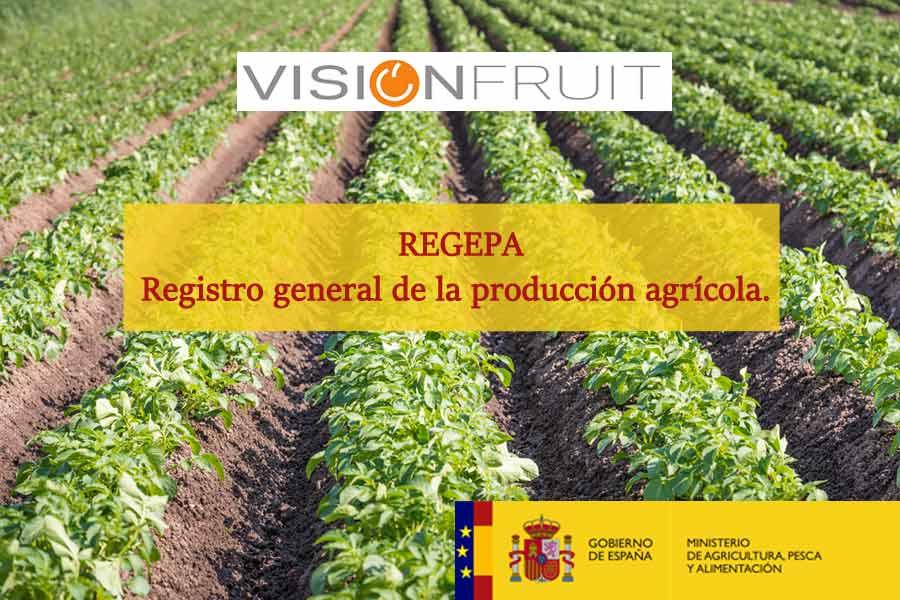 Nueva actualización del REGEPA para nuestros clientes.